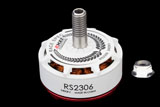 Emax RS2306 2750kv RaceSpecs White Editions FPV Racing Brushless Motor
